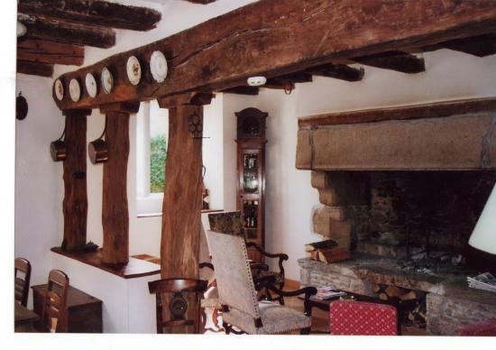 le salon et la cheminée monumentale